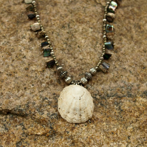 Shell & Shell Necklace